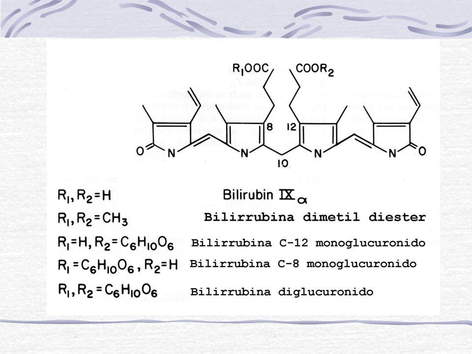 Síndrome de Crigler-Najjar Características Clínicas Tipo I Severa ictericia que aparece entre el 1er y 3er día después del nacimiento La [bilirrubina]= 25-45 mg /dl Hay kernicterus o encefalopatía por bilirrubina Tipo II - La [bilirrubina]= 15-25 mg/dl - kernicterus: raro - Presentan una mayor respuesta a drogas que estimulan la hiperplasia del RE por ejemplo fenobarbital o dilantina