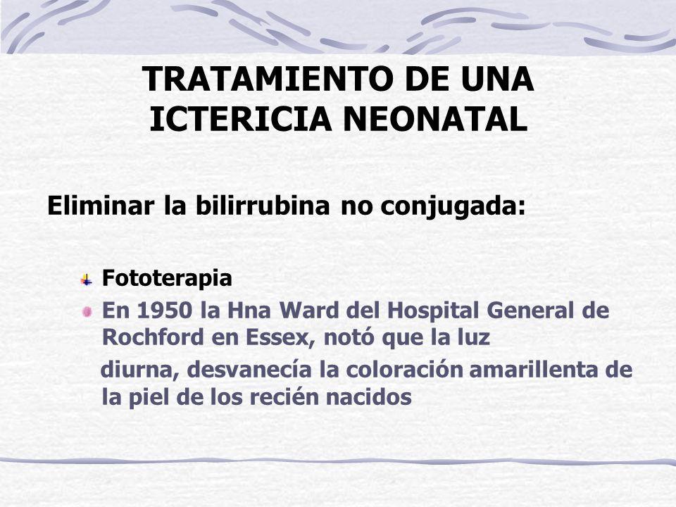 TRATAMIENTO DE UNA ICTERICIA NEONATAL Eliminar la bilirrubina no conjugada: Fototerapia En 1950 la Hna Ward del Hospital General de Rochford en Essex,