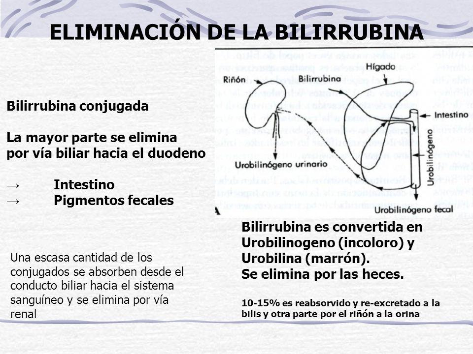 1º caída Bilirrubina: 3 caídas BSP: 2 caídas ICG: 1 caída