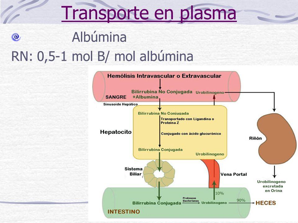 Clasificación: Hiperbilirrubinemias No Conjugadas Síndrome de Gilbert Síndrome de Crigler-Najjar, tipo I y II Hiperbilirrubinemias Conjugadas Síndrome de Dubin-Johnson Síndrome de Rotor