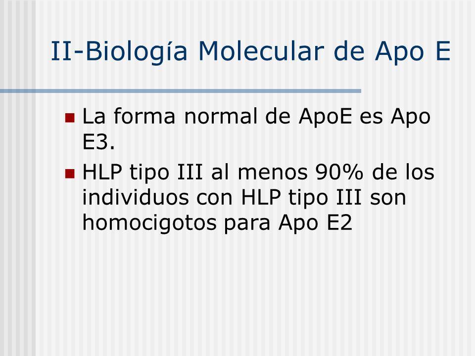 II-Biolog í a Molecular de Apo E La forma normal de ApoE es Apo E3. HLP tipo III al menos 90% de los individuos con HLP tipo III son homocigotos para