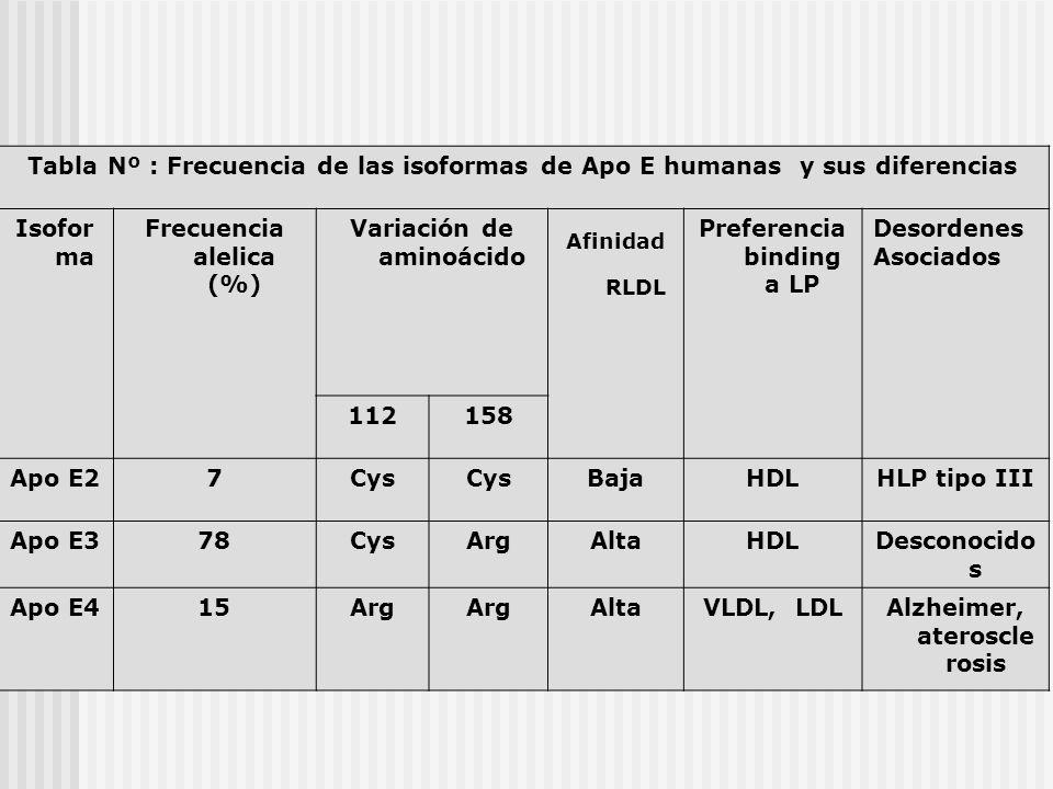 Tabla Nº : Frecuencia de las isoformas de Apo E humanas y sus diferencias Isofor ma Frecuencia alelica (%) Variación de aminoácido Afinidad RLDL Prefe