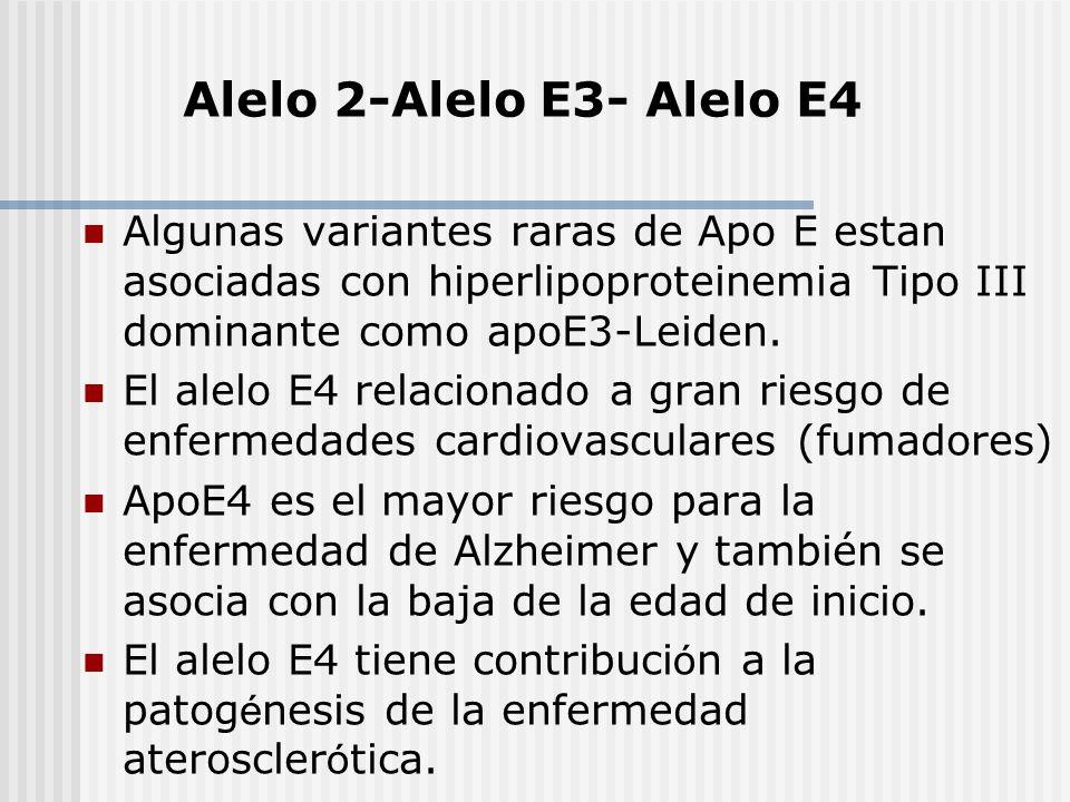 Algunas variantes raras de Apo E estan asociadas con hiperlipoproteinemia Tipo III dominante como apoE3-Leiden. El alelo E4 relacionado a gran riesgo