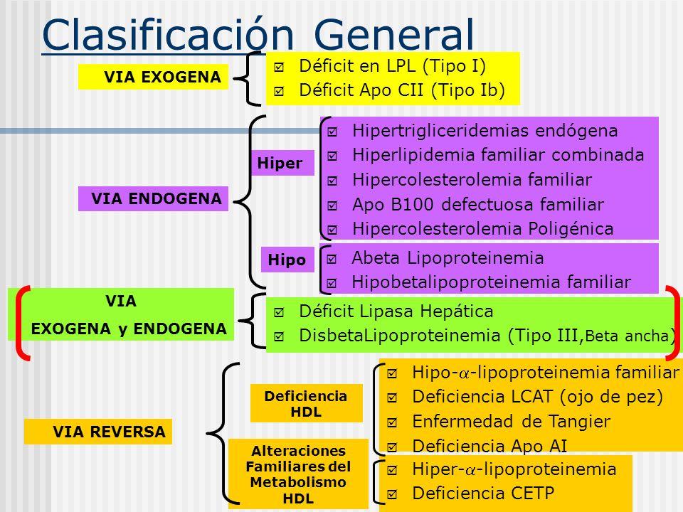 Clasificación General Déficit en LPL (Tipo I) Déficit Apo CII (Tipo Ib) Hipertrigliceridemias endógena Hiperlipidemia familiar combinada Hipercolester