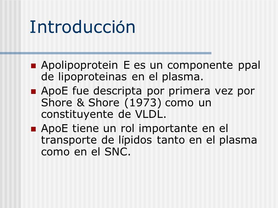 Introducci ó n Apolipoprotein E es un componente ppal de lipoproteinas en el plasma. ApoE fue descripta por primera vez por Shore & Shore (1973) como
