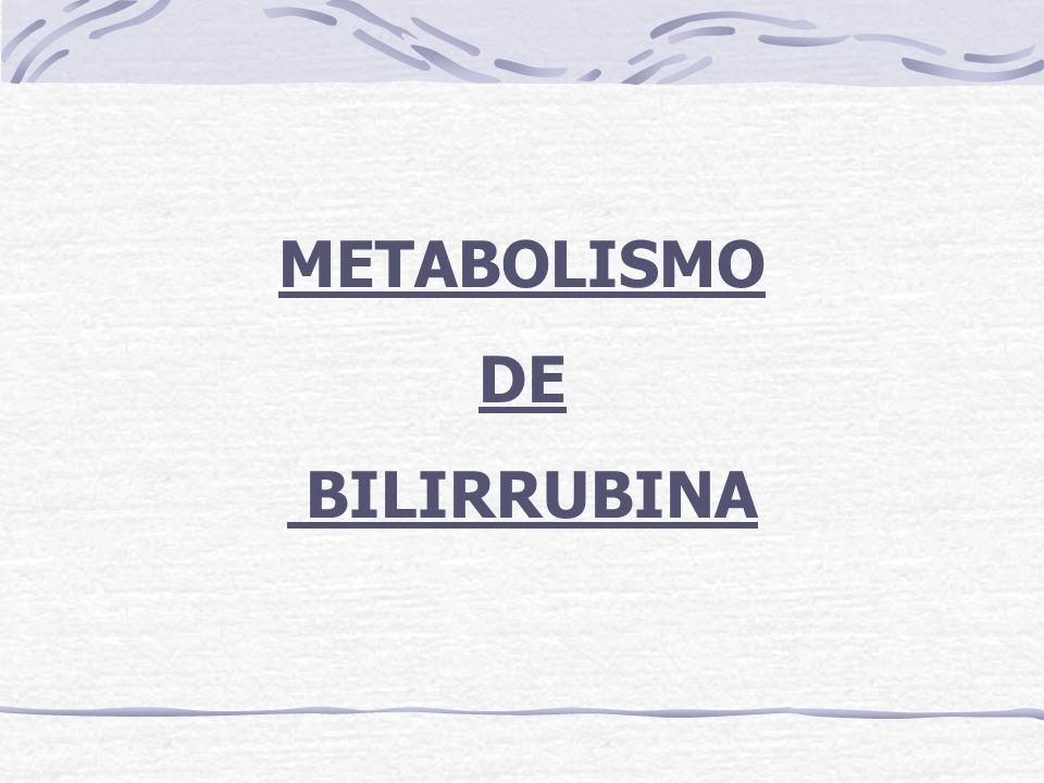 METABOLISMO DE BILIRRUBINA