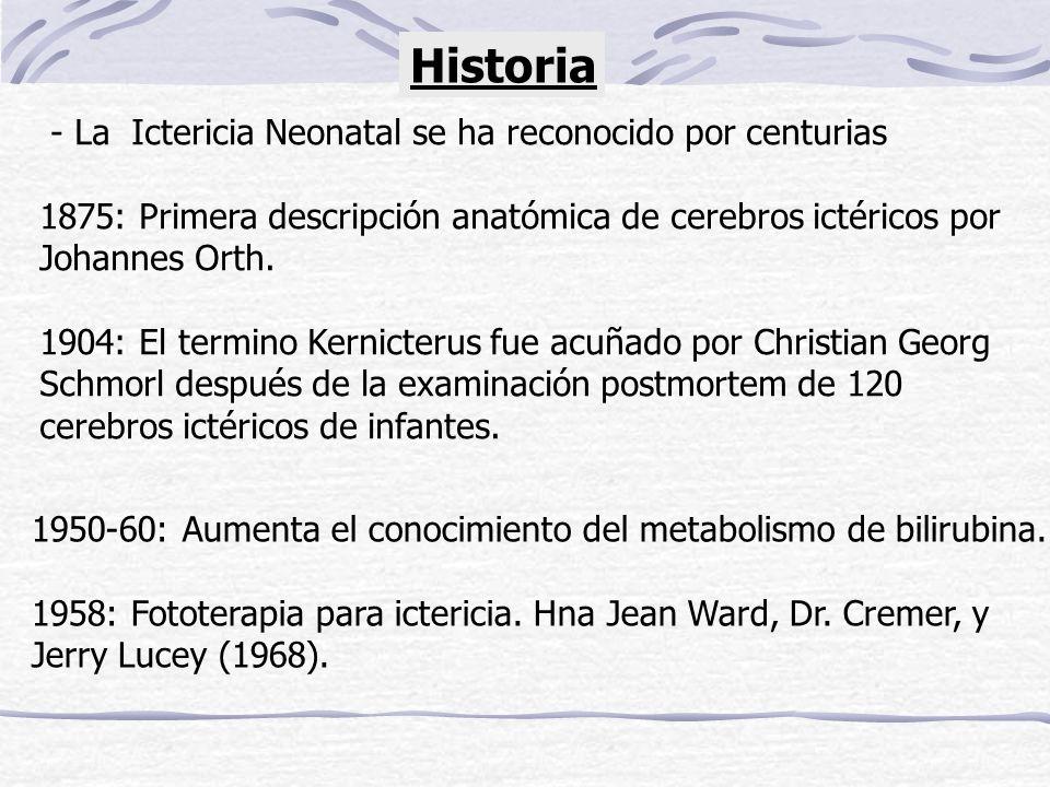 Historia - La Ictericia Neonatal se ha reconocido por centurias 1875: Primera descripción anatómica de cerebros ictéricos por Johannes Orth. 1904: El