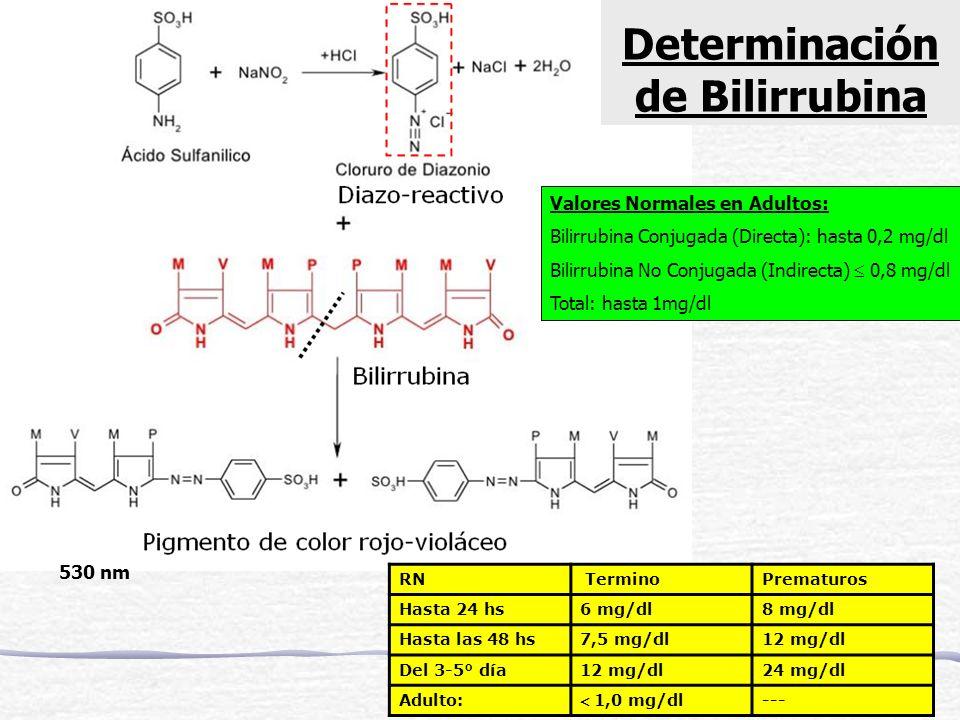 530 nm: azo-bilirrubina Valores Normales en Adultos: Bilirrubina Conjugada (Directa): hasta 0,2 mg/dl Bilirrubina No Conjugada (Indirecta) 0,8 mg/dl T