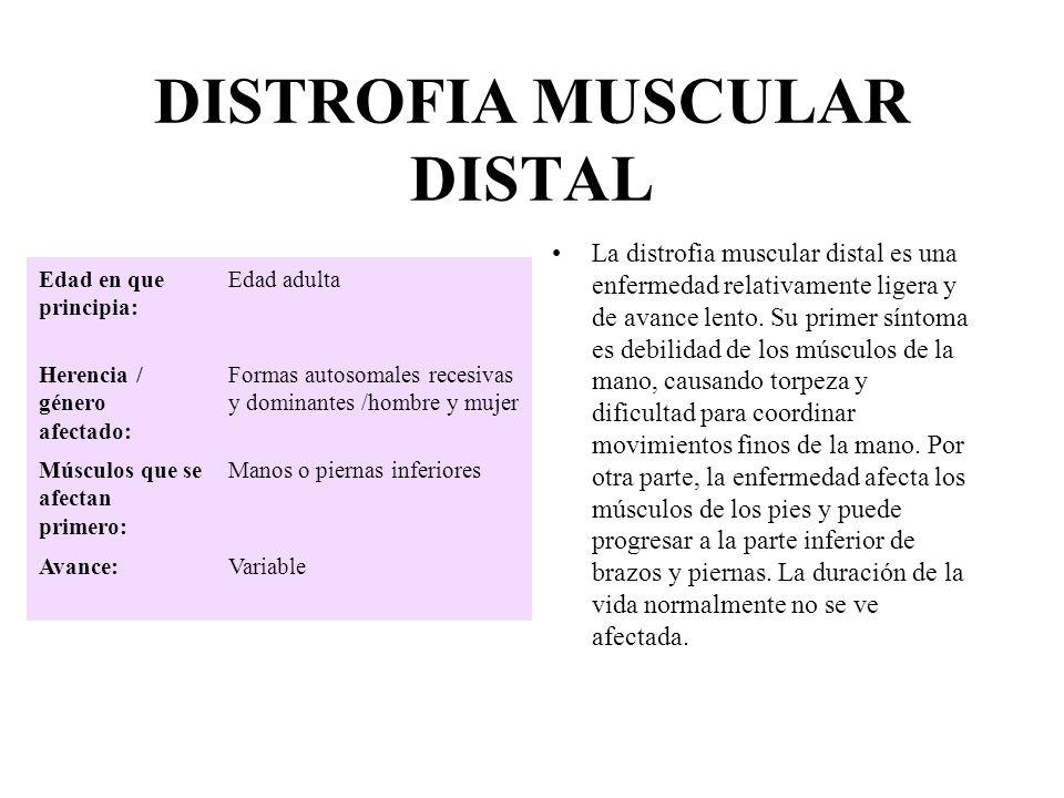 DISTROFIA MUSCULAR DISTAL La distrofia muscular distal es una enfermedad relativamente ligera y de avance lento. Su primer síntoma es debilidad de los