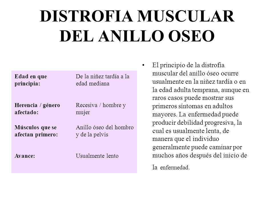 DISTROFIA MUSCULAR DEL ANILLO OSEO El principio de la distrofia muscular del anillo óseo ocurre usualmente en la niñez tardía o en la edad adulta temp