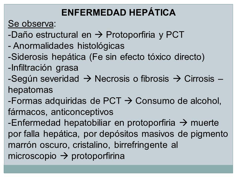 ENFERMEDAD HEPÁTICA Se observa: -Daño estructural en Protoporfiria y PCT - Anormalidades histológicas -Siderosis hepática (Fe sin efecto tóxico direct