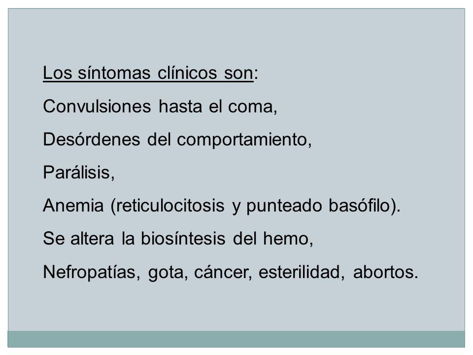 Los síntomas clínicos son: Convulsiones hasta el coma, Desórdenes del comportamiento, Parálisis, Anemia (reticulocitosis y punteado basófilo). Se alte