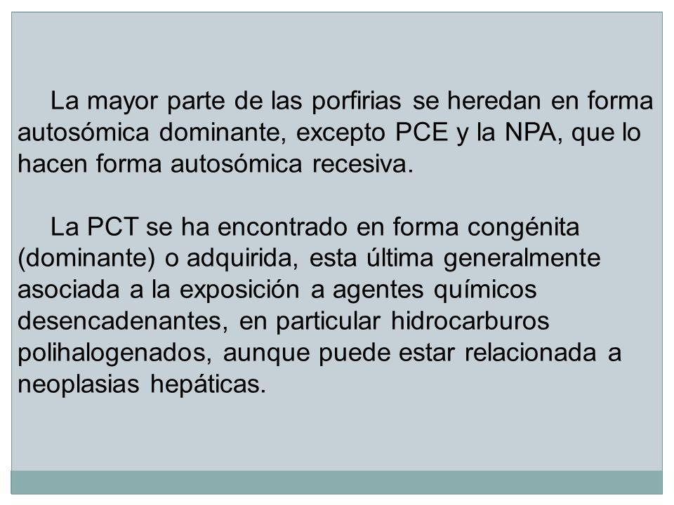 La mayor parte de las porfirias se heredan en forma autosómica dominante, excepto PCE y la NPA, que lo hacen forma autosómica recesiva. La PCT se ha e