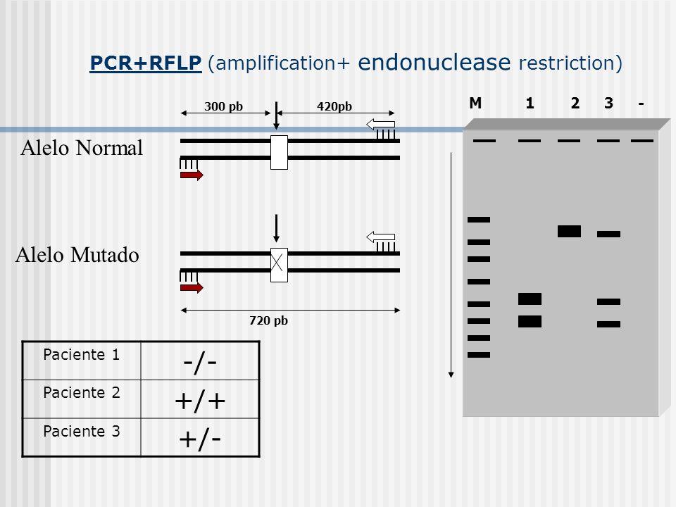 PCR+RFLP (amplification+ endonuclease restriction) Alelo Normal Alelo Mutado 420pb300 pb720 pb M123- Paciente 1 -/- Paciente 2 +/+ Paciente 3 +/-