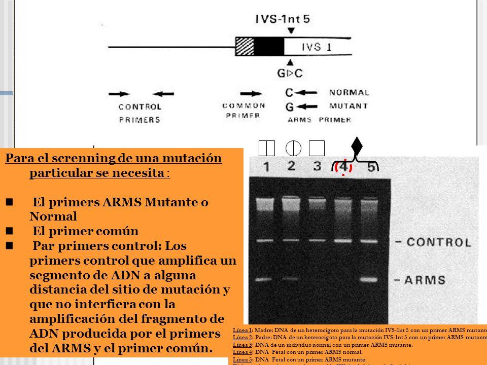 Para el screnning de una mutación particular se necesita : El primers ARMS Mutante o Normal El primer común Par primers control: Los primers control q