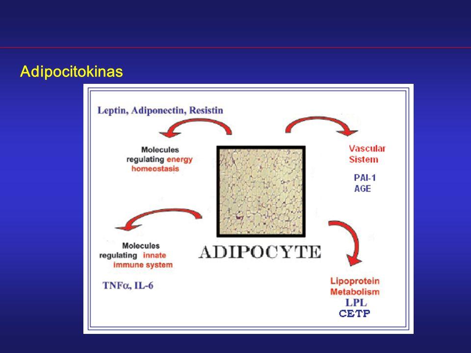 Adipocitokinas