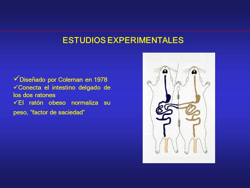 ESTUDIOS EXPERIMENTALES Diseñado por Coleman en 1978 Conecta el intestino delgado de los dos ratones El ratón obeso normaliza su peso, factor de saciedad