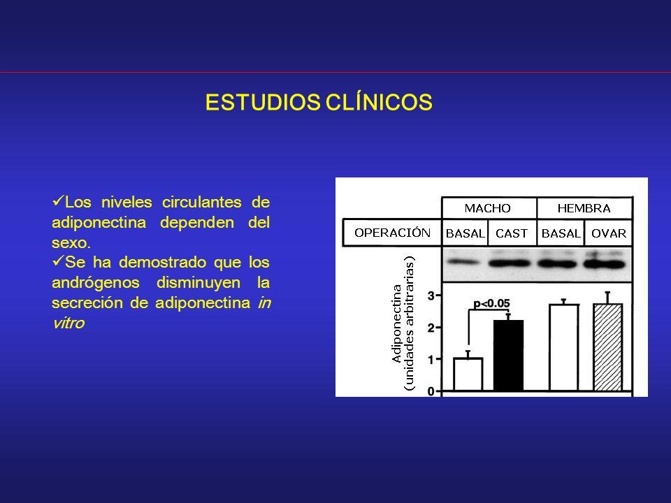 ESTUDIOS CLÍNICOS Los niveles circulantes de adiponectina dependen del sexo. Se ha demostrado que los andrógenos disminuyen la secreción de adiponecti