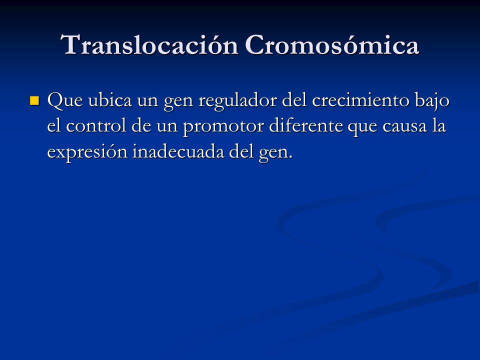 Translocación Cromosómica Que ubica un gen regulador del crecimiento bajo el control de un promotor diferente que causa la expresión inadecuada del gen.