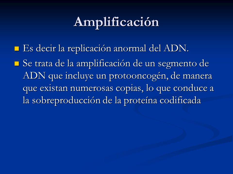 Amplificación Es decir la replicación anormal del ADN. Es decir la replicación anormal del ADN. Se trata de la amplificación de un segmento de ADN que