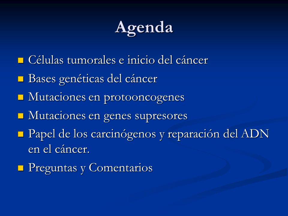 Agenda Células tumorales e inicio del cáncer Células tumorales e inicio del cáncer Bases genéticas del cáncer Bases genéticas del cáncer Mutaciones en protooncogenes Mutaciones en protooncogenes Mutaciones en genes supresores Mutaciones en genes supresores Papel de los carcinógenos y reparación del ADN en el cáncer.
