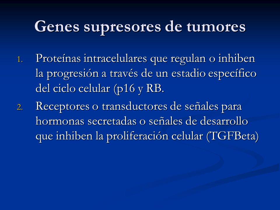 Genes supresores de tumores 1. Proteínas intracelulares que regulan o inhiben la progresión a través de un estadio específico del ciclo celular (p16 y