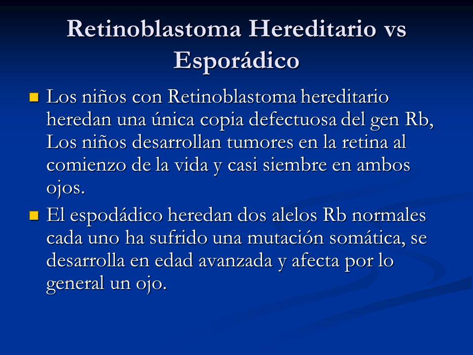 Retinoblastoma Hereditario vs Esporádico Los niños con Retinoblastoma hereditario heredan una única copia defectuosa del gen Rb, Los niños desarrollan tumores en la retina al comienzo de la vida y casi siembre en ambos ojos.