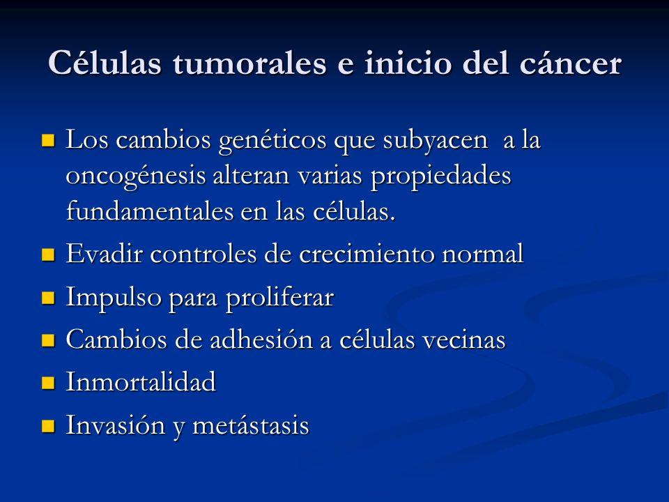 Células tumorales e inicio del cáncer Los cambios genéticos que subyacen a la oncogénesis alteran varias propiedades fundamentales en las células. Los
