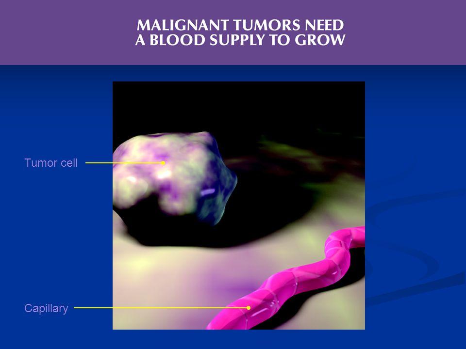 Tumor cell Capillary