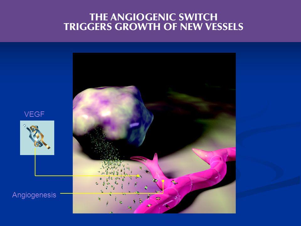 VEGF Angiogenesis