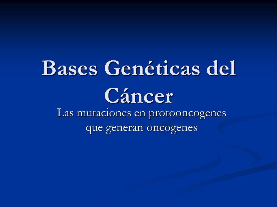 Bases Genéticas del Cáncer Las mutaciones en protooncogenes que generan oncogenes