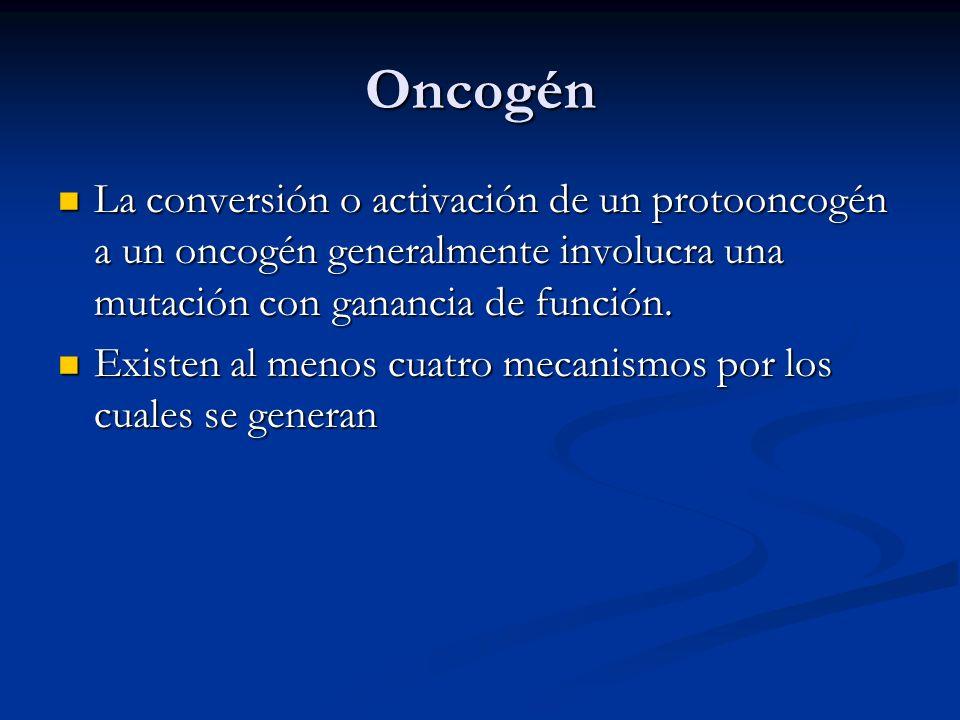 Oncogén La conversión o activación de un protooncogén a un oncogén generalmente involucra una mutación con ganancia de función.