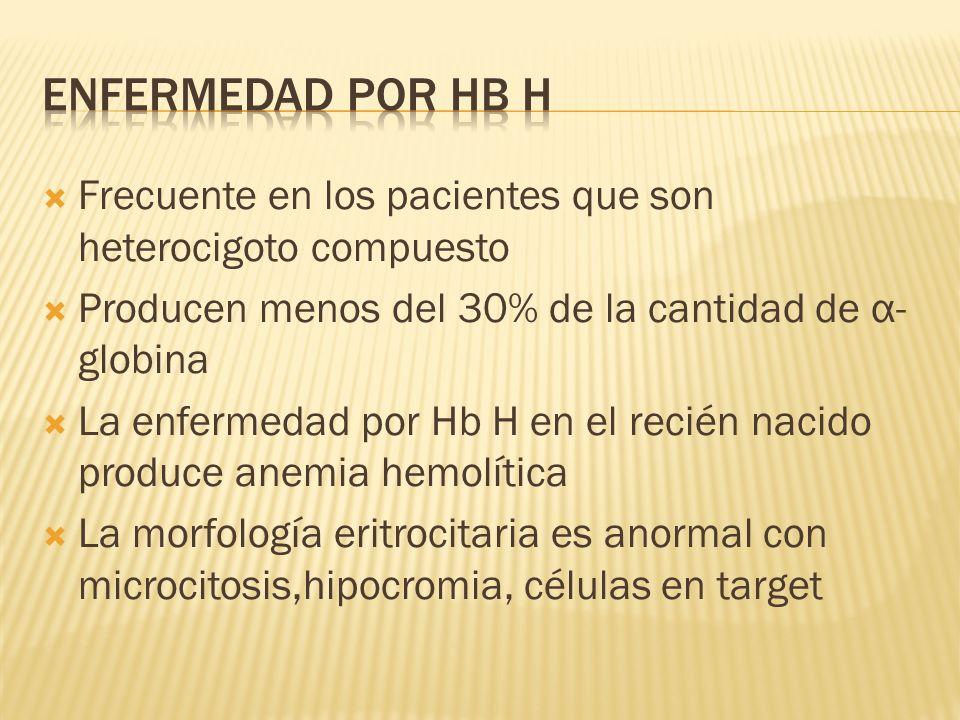 Frecuente en los pacientes que son heterocigoto compuesto Producen menos del 30% de la cantidad de α- globina La enfermedad por Hb H en el recién naci