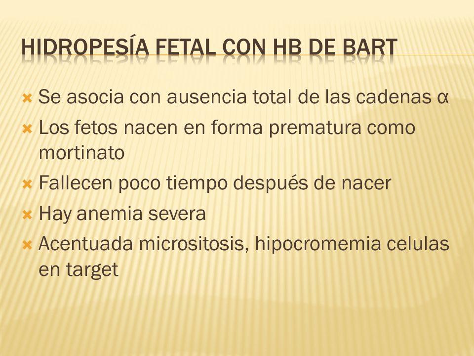 Se asocia con ausencia total de las cadenas α Los fetos nacen en forma prematura como mortinato Fallecen poco tiempo después de nacer Hay anemia sever