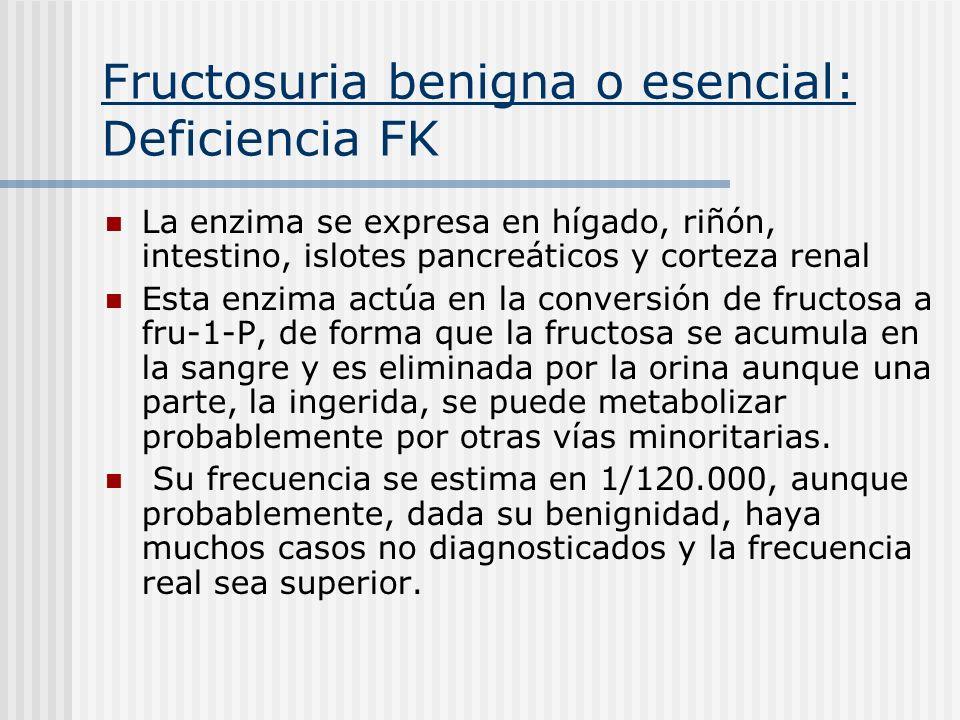 Fructosuria benigna o esencial: Deficiencia FK La enzima se expresa en hígado, riñón, intestino, islotes pancreáticos y corteza renal Esta enzima actú