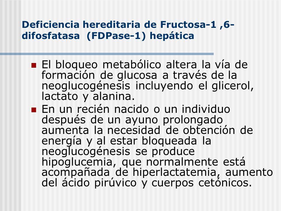 El bloqueo metabólico altera la vía de formación de glucosa a través de la neoglucogénesis incluyendo el glicerol, lactato y alanina. En un recién nac