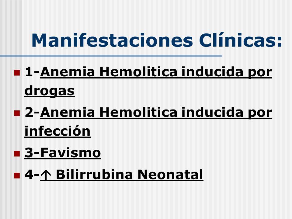 Manifestaciones Clínicas: 1-Anemia Hemolitica inducida por drogas 2-Anemia Hemolitica inducida por infección 3-Favismo 4- Bilirrubina Neonatal