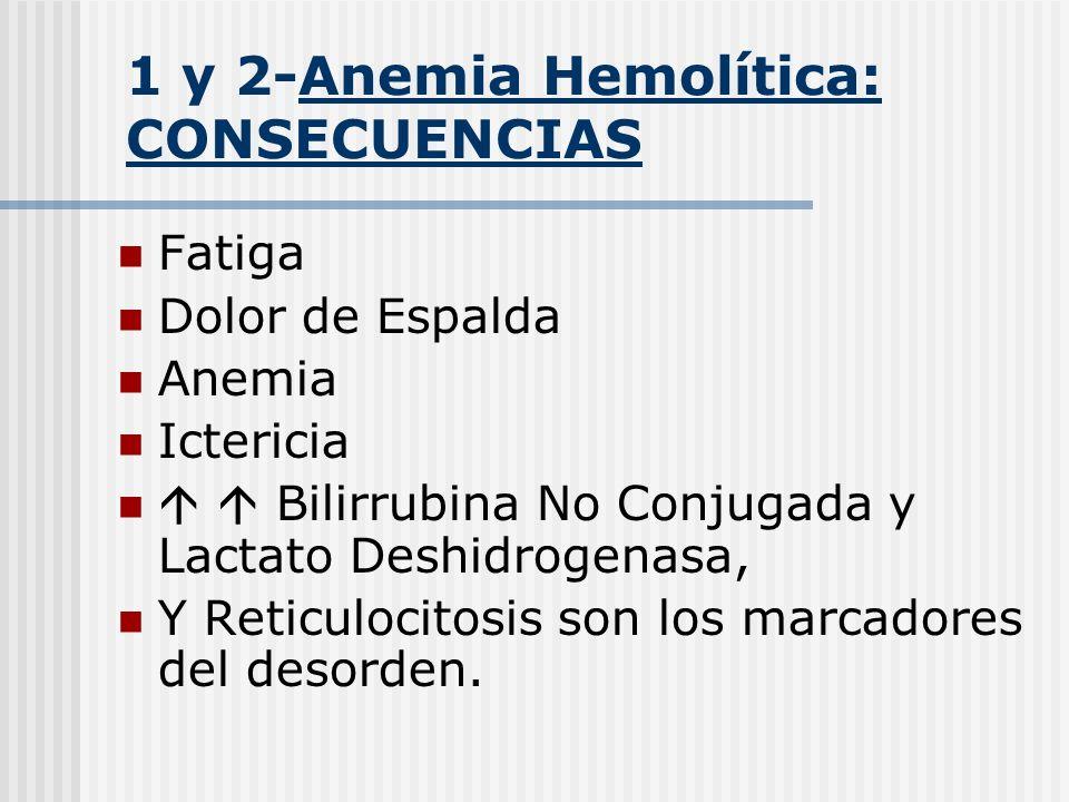 1 y 2-Anemia Hemolítica: CONSECUENCIAS Fatiga Dolor de Espalda Anemia Ictericia Bilirrubina No Conjugada y Lactato Deshidrogenasa, Y Reticulocitosis s