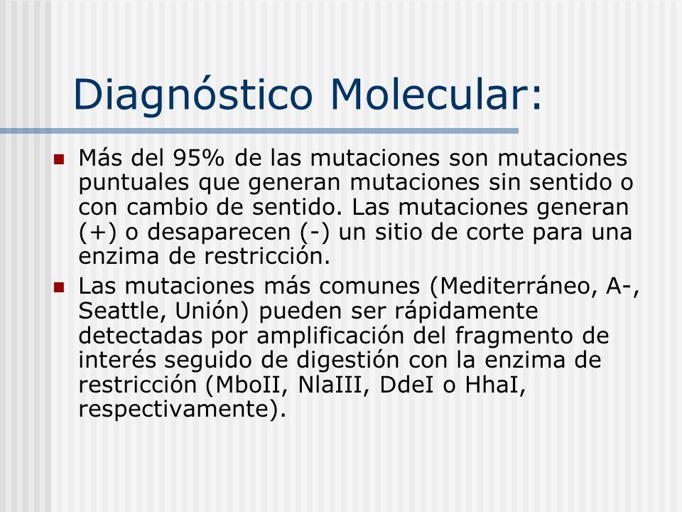 Diagnóstico Molecular: Más del 95% de las mutaciones son mutaciones puntuales que generan mutaciones sin sentido o con cambio de sentido. Las mutacion