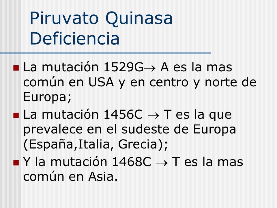 Piruvato Quinasa Deficiencia La mutación 1529G A es la mas común en USA y en centro y norte de Europa; La mutación 1456C T es la que prevalece en el s