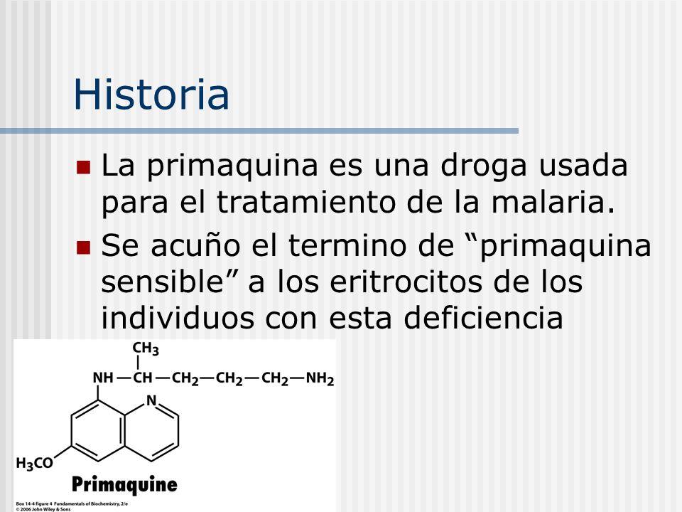 Historia La primaquina es una droga usada para el tratamiento de la malaria. Se acuño el termino de primaquina sensible a los eritrocitos de los indiv