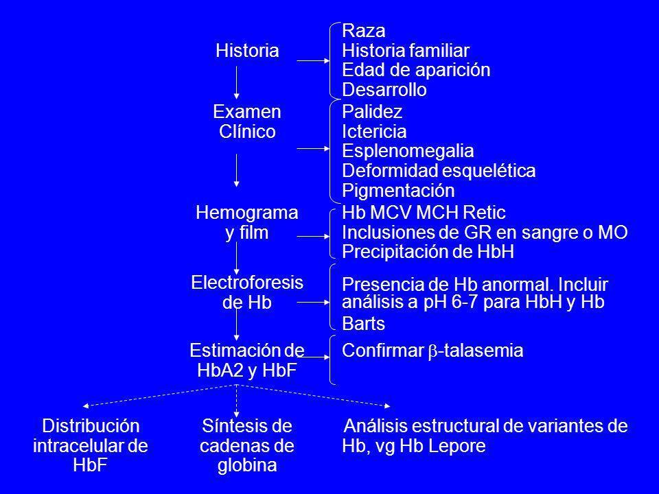 Historia Raza Historia familiar Edad de aparición Desarrollo Examen Clínico Palidez Ictericia Esplenomegalia Deformidad esquelética Pigmentación Hemog