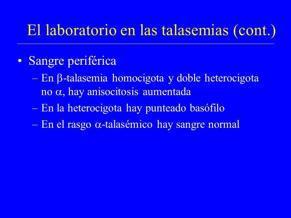 El laboratorio en las talasemias (cont.) Sangre periférica –En -talasemia homocigota y doble heterocigota no, hay anisocitosis aumentada –En la hetero