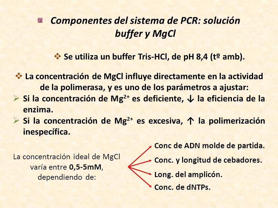 Componentes del sistema de PCR: dNTPs Generalmente se utilizan concentraciones equimolares de los 4 dNTPs (dATP, dCTP, dGTP, dTTP) en concentraciones que varían entre 200 – 250 μM de c/u.