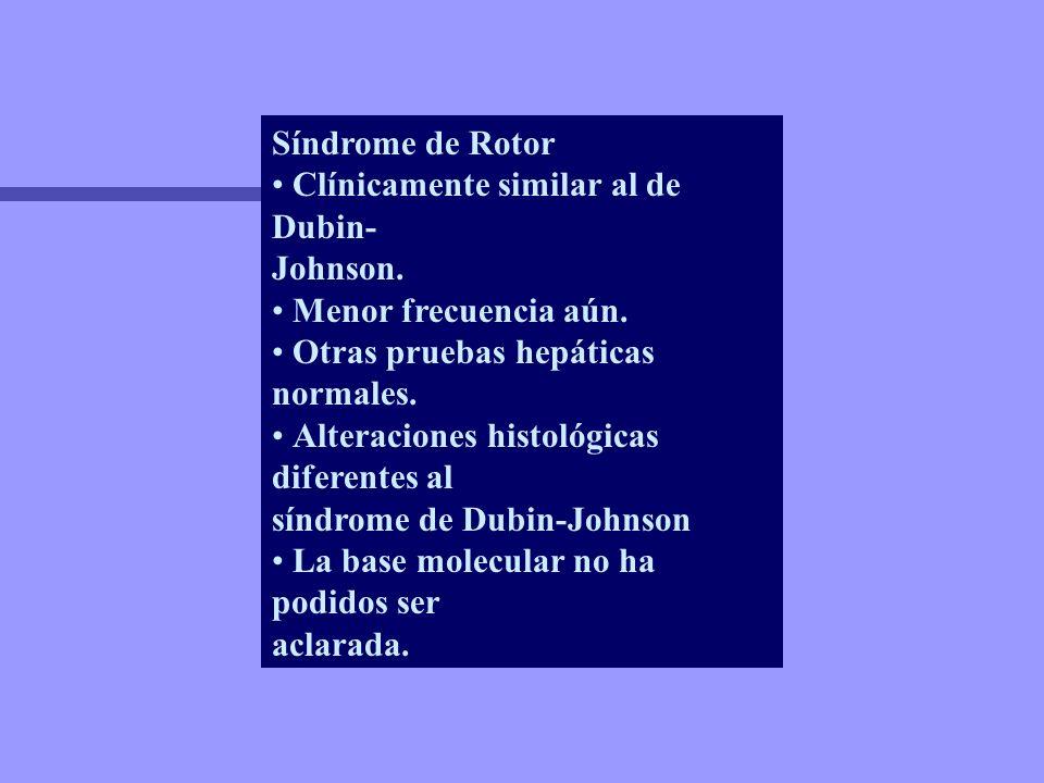 Síndrome de Rotor Clínicamente similar al de Dubin- Johnson. Menor frecuencia aún. Otras pruebas hepáticas normales. Alteraciones histológicas diferen