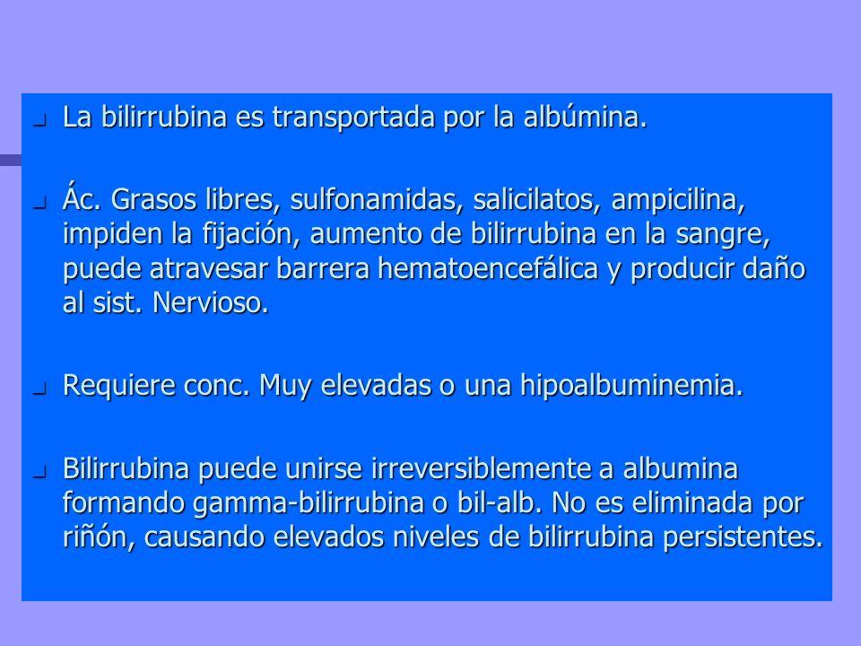 n La bilirrubina es transportada por la albúmina. n Ác. Grasos libres, sulfonamidas, salicilatos, ampicilina, impiden la fijación, aumento de bilirrub