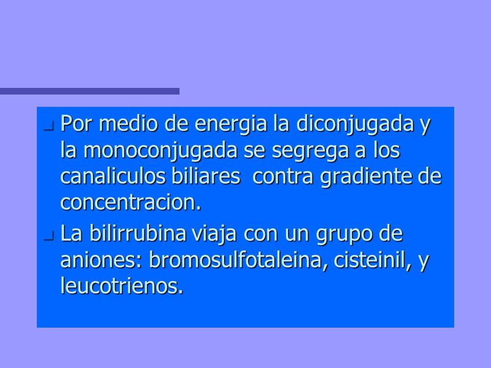 n Por medio de energia la diconjugada y la monoconjugada se segrega a los canaliculos biliares contra gradiente de concentracion. n La bilirrubina via