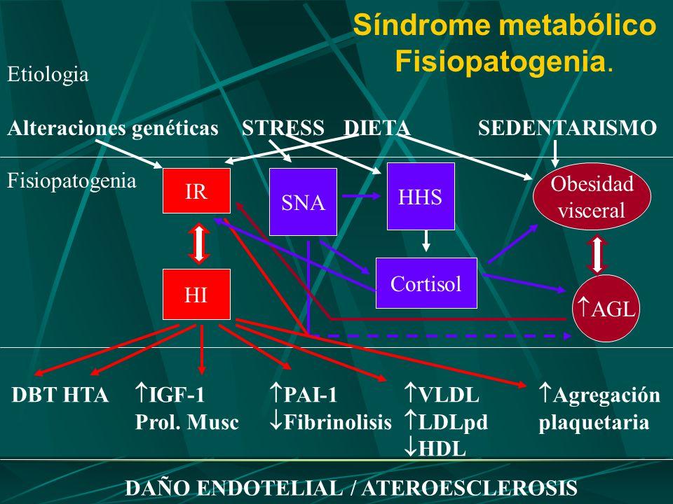 Síndrome metabólico Fisiopatogenia. Etiologia Alteraciones genéticas STRESSDIETASEDENTARISMO Fisiopatogenia IR HI Obesidad visceral AGL SNA HHS Cortis
