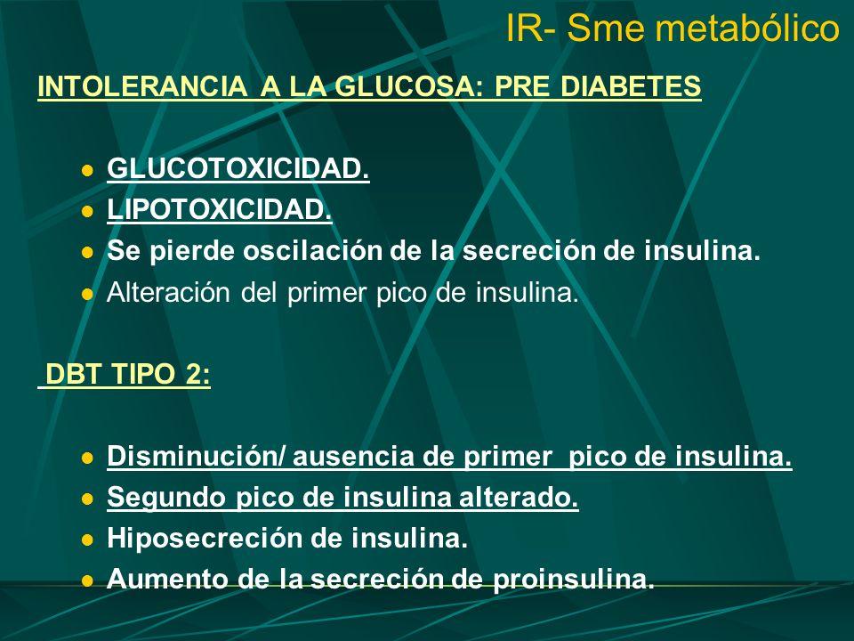IR- Sme metabólico INTOLERANCIA A LA GLUCOSA: PRE DIABETES GLUCOTOXICIDAD. LIPOTOXICIDAD. Se pierde oscilación de la secreción de insulina. Alteración