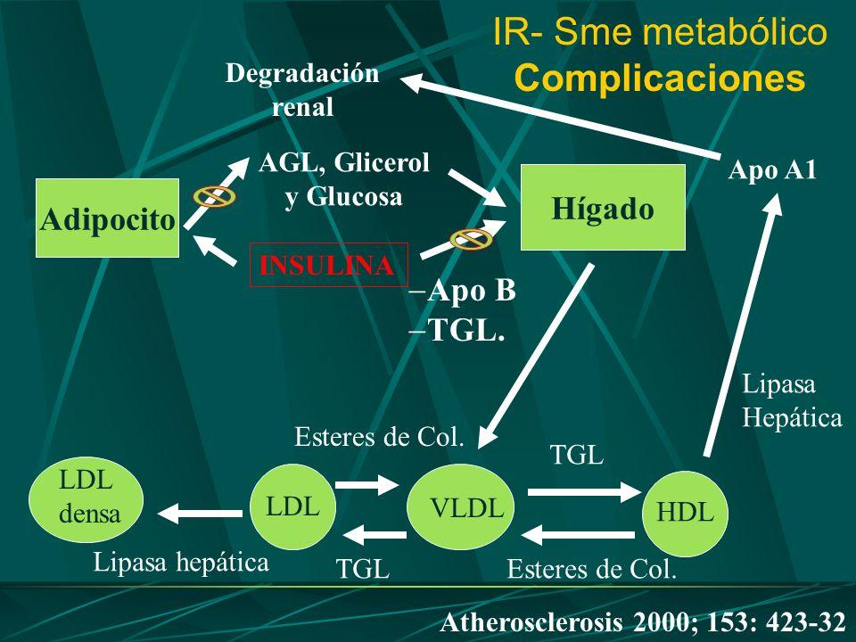 IR- Sme metabólico Complicaciones LDL densa LDL VLDL HDL Lipasa hepática TGL Esteres de Col. TGL Esteres de Col. Lipasa Hepática Apo A1 Degradación re